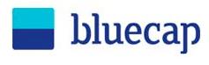 Bluecap Consultoria